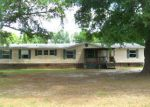 Foreclosed Home in Nicholls 31554 163 S MEADOW DR - Property ID: 4262175