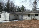 Foreclosed Home in Houghton Lake 48629 116 TRESCOTT LN - Property ID: 4262574