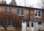 Foreclosed Home in Brandon 5733 159 HIGH POND RD - Property ID: 4263833