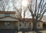 Foreclosed Home in Alamosa 81101 146 E 2ND ST - Property ID: 4266686