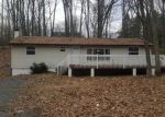 Foreclosed Home in Dingmans Ferry 18328 141 BASSWOOD DR - Property ID: 4268068