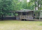 Foreclosed Home in Burgaw 28425 532 COPPERHEAD LN - Property ID: 4271434