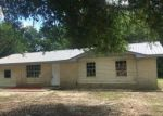 Foreclosed Home in Defuniak Springs 32435 303 S NORWOOD RD - Property ID: 4276265