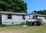 Foreclosed Home in Free Soil 49411 8972 N LA SALLE RD - Property ID: 4278479