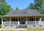 Foreclosed Home in Burgaw 28425 536 COPPERHEAD LN - Property ID: 4279024
