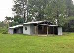 Foreclosed Home in Carriere 39426 194 GEORGE WISE RD - Property ID: 4280964