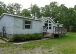 Foreclosed Home in Grand Rapids 55744 31509 JANE LN - Property ID: 4284450