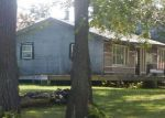 Foreclosed Home in Montgomery 56069 38459 181ST AVE - Property ID: 4286314