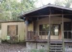 Foreclosed Home in High Springs 32643 124 SE SILKY CT - Property ID: 4286726