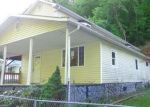 Foreclosed Home in Mc Carr 41544 268 ALLBURN HOLW - Property ID: 4288087