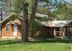 Foreclosed Home in Hill City 55748 240 LAKE AVE W - Property ID: 4288701