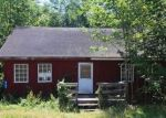 Foreclosed Home in Narrowsburg 12764 8143 STATE ROUTE 52 - Property ID: 4290328