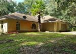 Foreclosed Home in Webster 33597 36032 CITADEL DR - Property ID: 4295497
