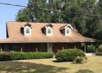Foreclosed Home in Tickfaw 70466 49290 KINCHEN RD - Property ID: 4295836