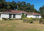 Foreclosed Home in Mulberry 33860 2819 BLACKWATER OAKS DR - Property ID: 6299794