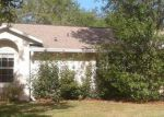 Foreclosed Home in Debary 32713 228 GRANDE VISTA ST - Property ID: 6312372