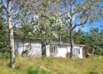 Foreclosed Home in Plymouth 2360 56 WALLWIND DR - Property ID: 6315898