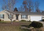 Foreclosed Home in Troy 63379 310 CUIVRE VALLEY DR - Property ID: 6321376