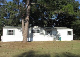 Foreclosure  id: 3913089