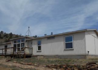 Foreclosure  id: 4143834