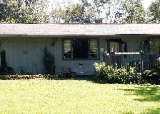 Foreclosure  id: 4235498